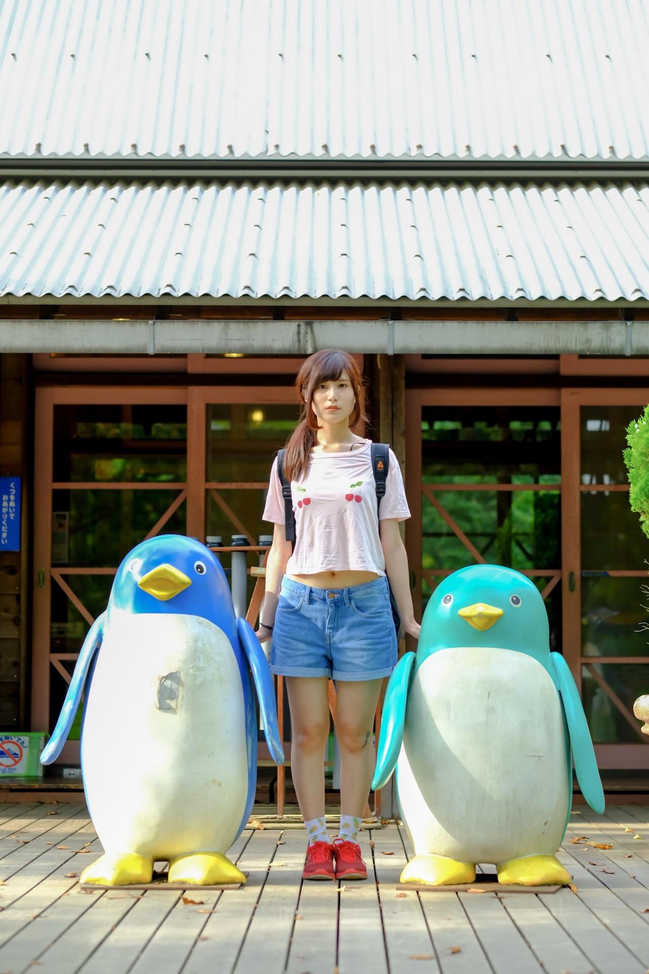 昭和記念公園 ペンギン こめくら