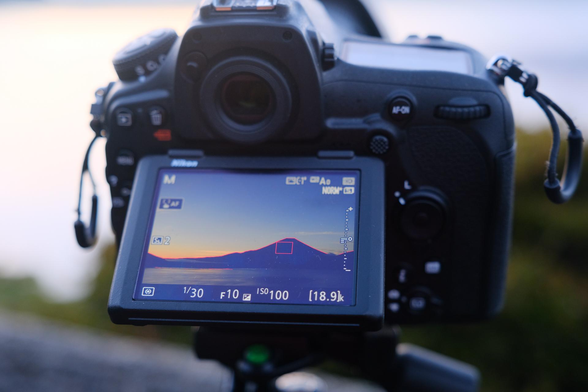 Nikon D850 ピーキング機能
