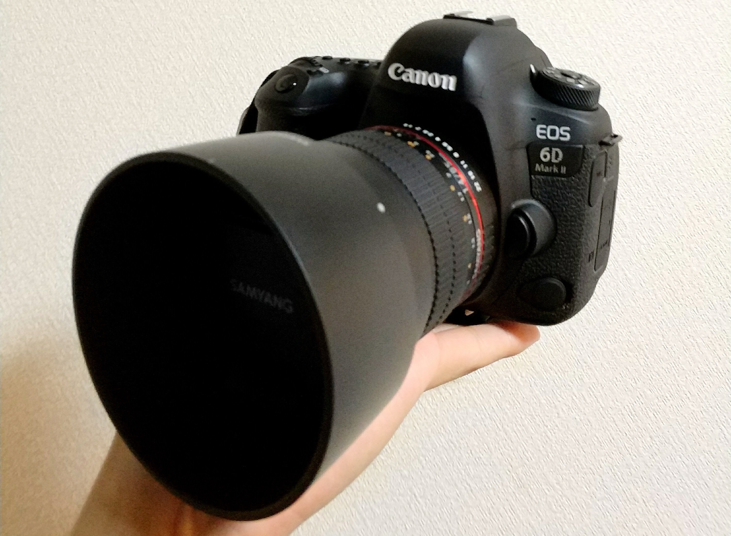 Canon EOS 6D MarkⅡ