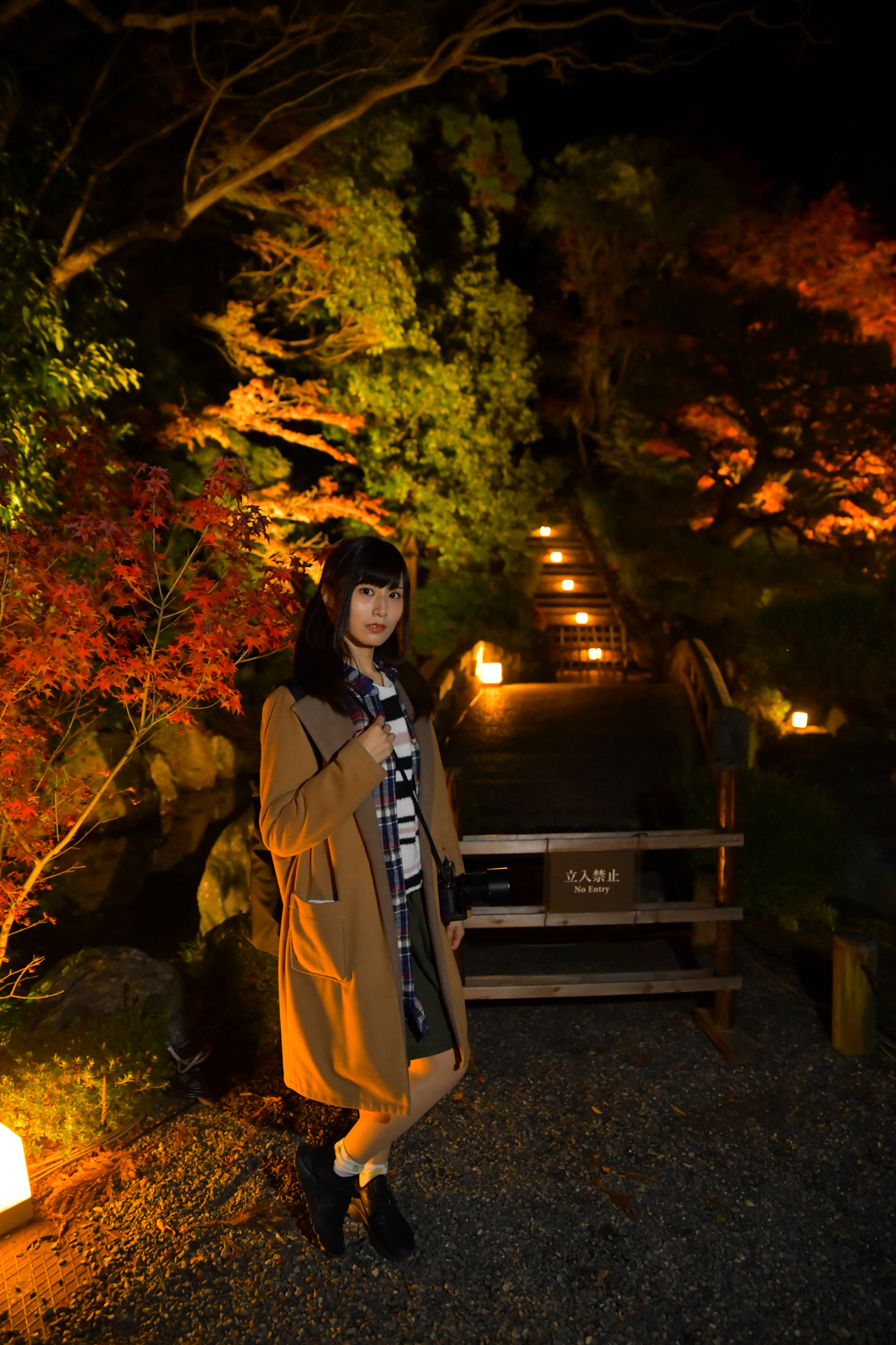 Nikon D850 京都 知恩院 ライトアップ 紅葉 こめくら