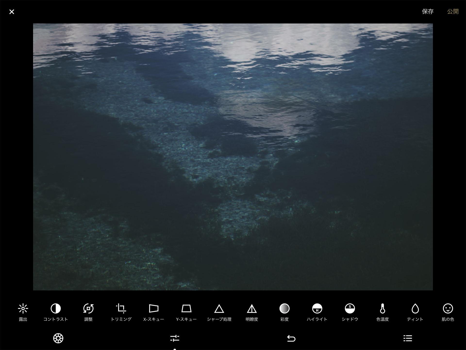 iPad VSCO