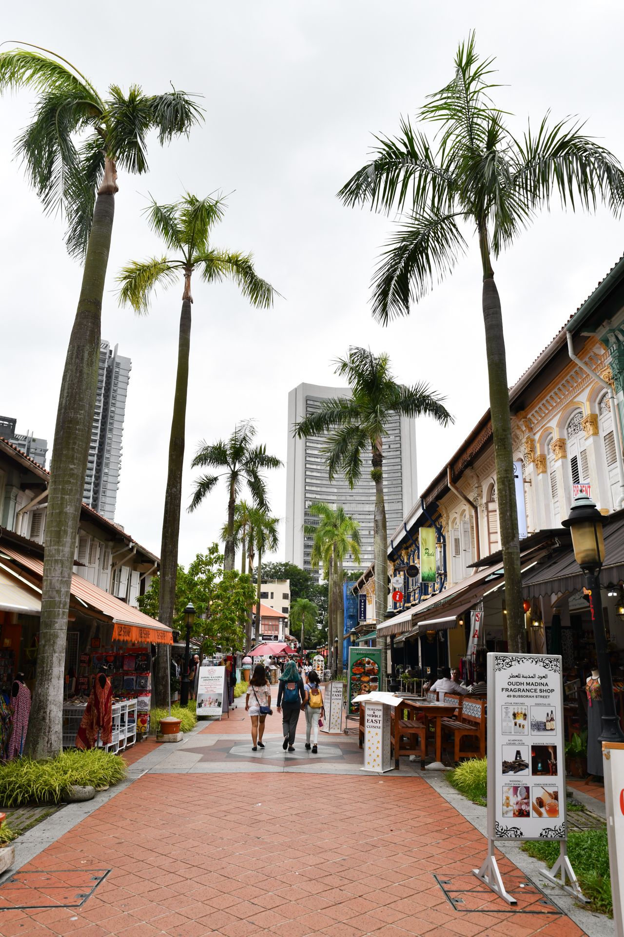 アラブ・ストリート シンガポール D850+SP 24-70mm F/2.8 Di VC USD G2