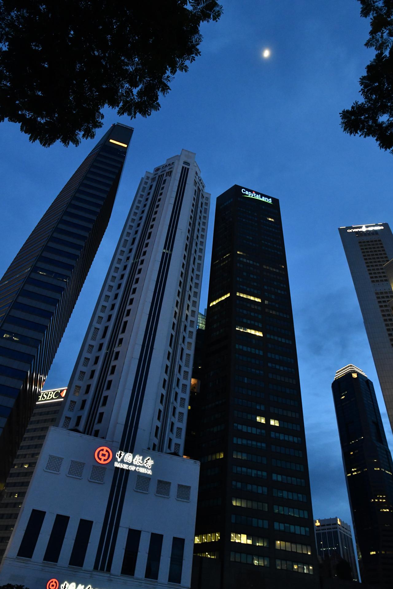 シンガポール マーライオン公園 D850+SP 24-70mm F/2.8 Di VC USD G2