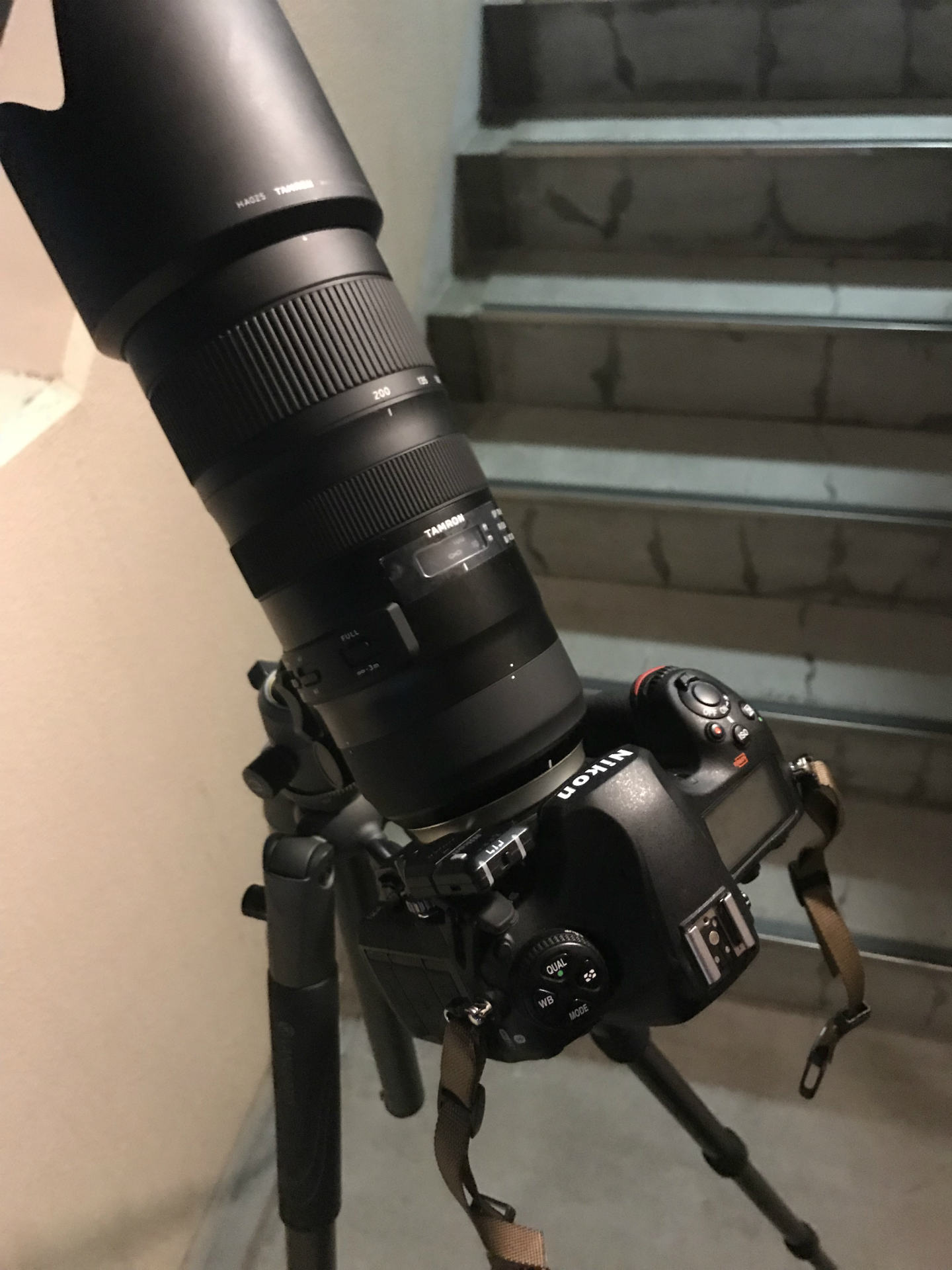 Nikon D850 SP 70-200mm F/2.8 Di VC USD G2 VEO 2 265CB