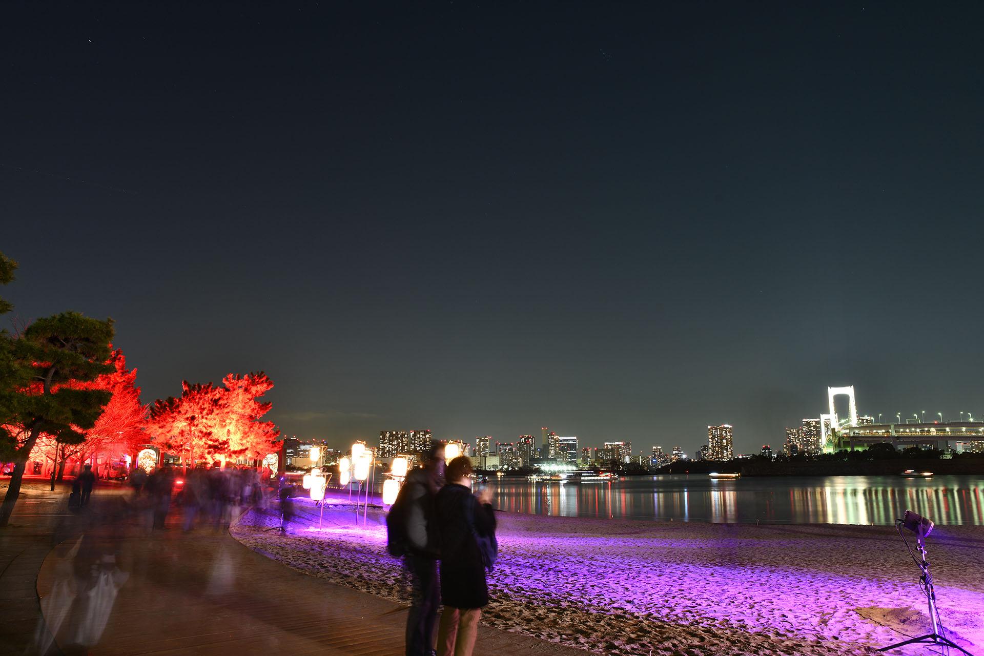 hokusai&TOKYO 水辺を彩る江戸祭 Nikon D850 タムロン