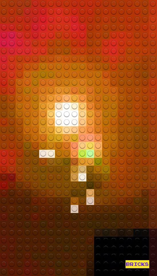 Bricks Camera 作例