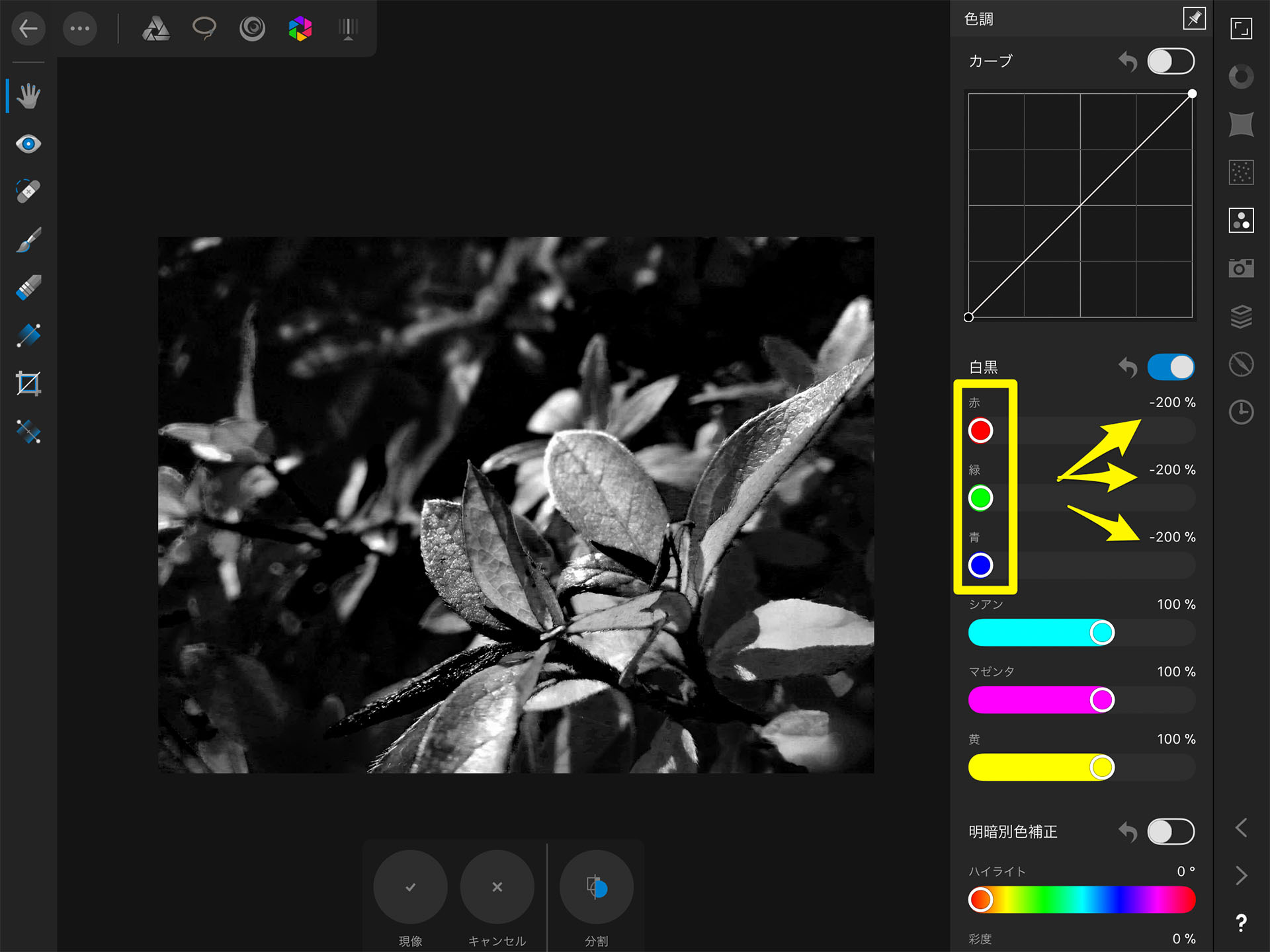 Affinity Photo iPad RAW現像 モノクロ