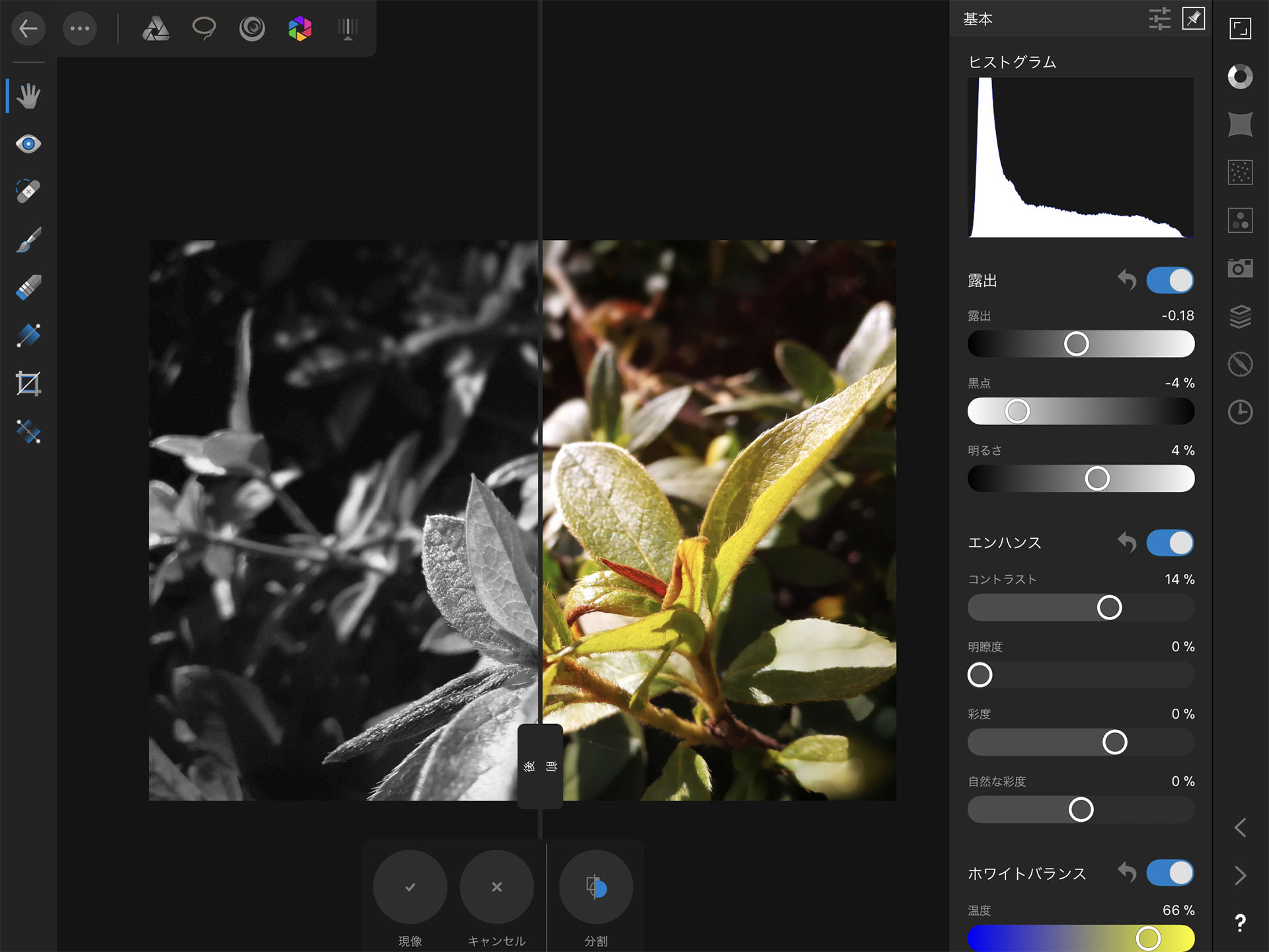 Affinity Photo iPad RAW現像 モノクロ