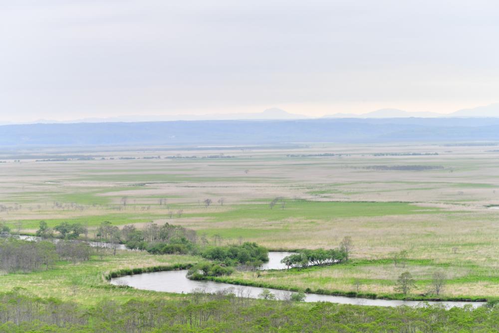 北海道 釧路湿原 観光 Nikon D850
