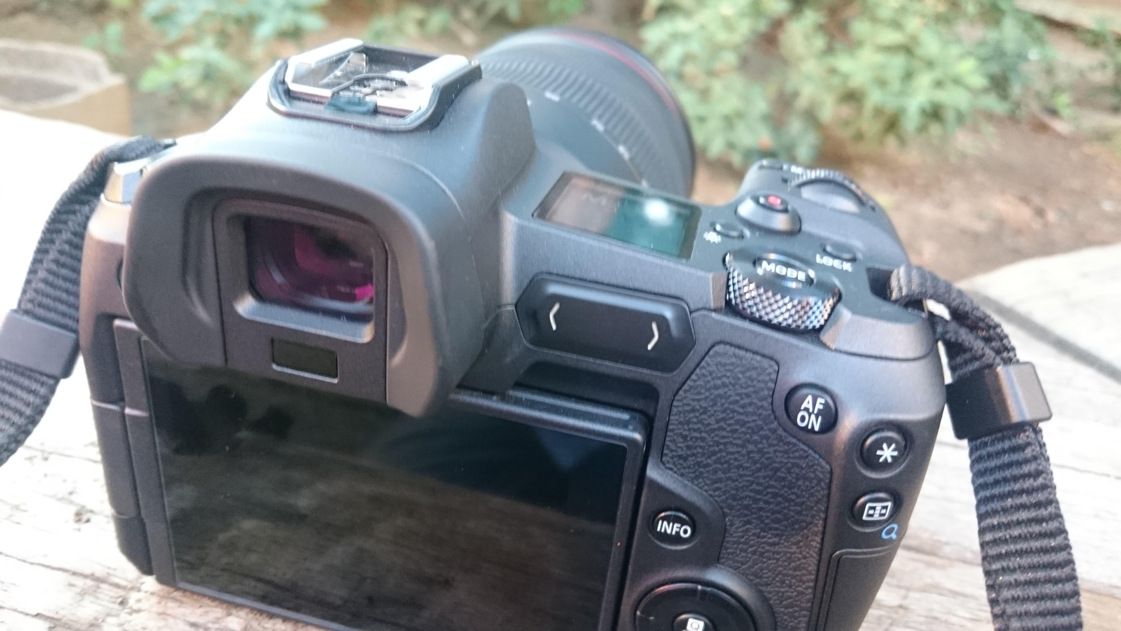 池袋ハロウィン2018 池ハロ Canon EOS R, RF24-105mm F4L IS USM